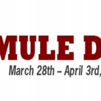 Columbia Mule Day Festival!